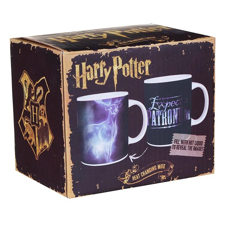 Harry Potter expecto