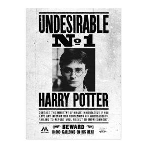 Harry Potter juliste