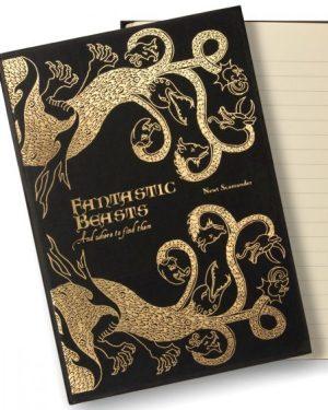 Potter muistikirja