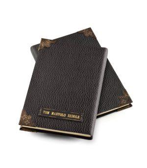 Voldemortin päiväkirja